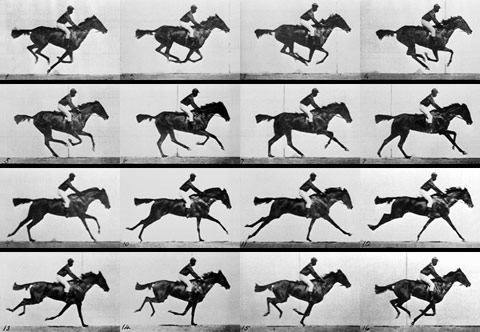 Eadward Muybridge's 1878 investigation into whether horses' feet were actually all off the ground at once during a trot.