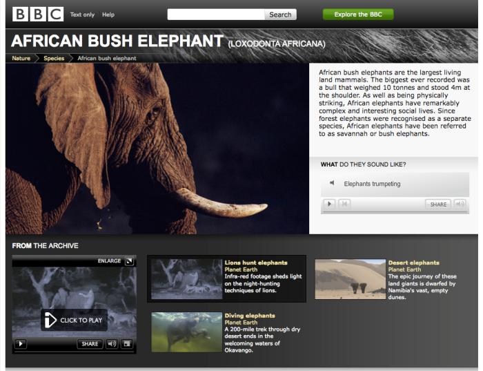 URIs for species such as the Bush Elephant
