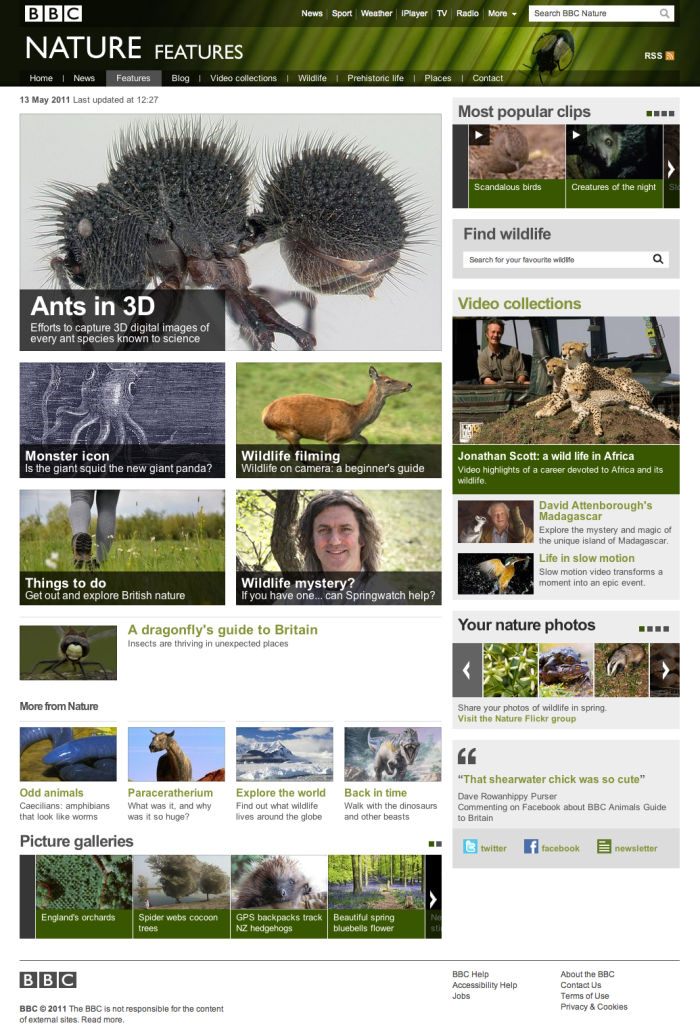 Screen grab of the new BBC nature site - features section